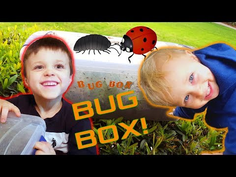 Digging For Bugs In The Rain For Our Toy Bug Box!