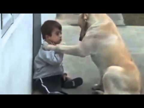 Niesamowite jak zwierzaki potrafią kochać