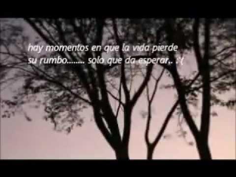 no te rindas honduras 14/02/2012