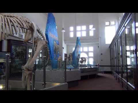 Taiping - Perak Museum