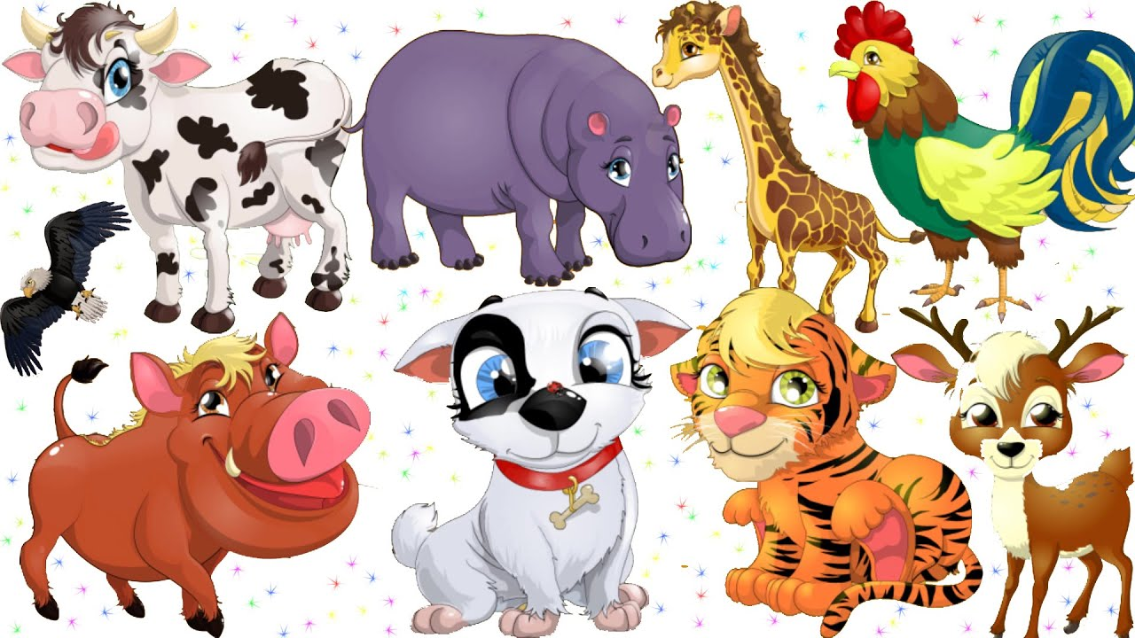 Animals for Kids Learning Animals for Children Animals