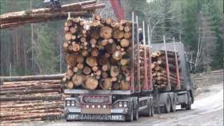 Volvo FH16 700 6x4 Timber Truck Loading