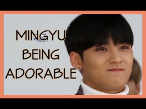 💟4 Minutes Of Mingyu Being Adorable [Seventeen Cute Moments]💟