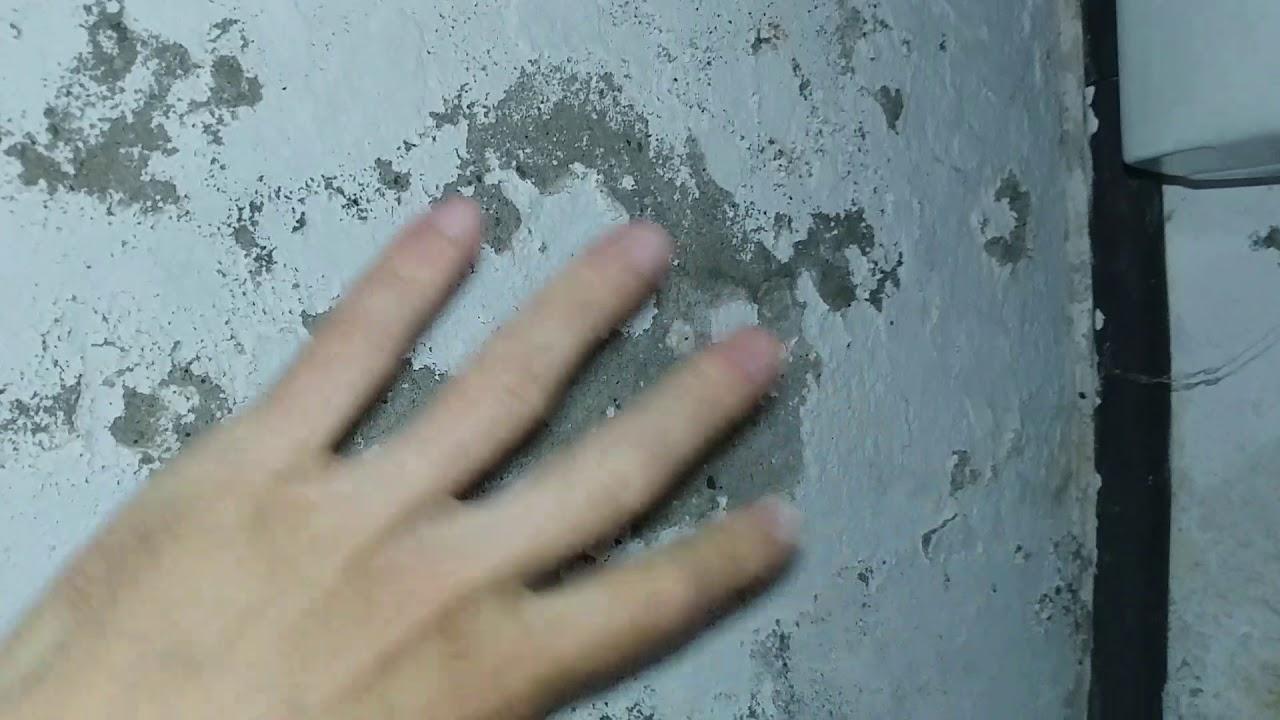 Vochtige Muren Verven.Vochtige Muren Kelder Behandelen En Bestrijden