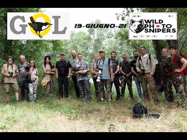 Incontro Wild Photo Snipers - Gruppo Ornitologico Lombardo