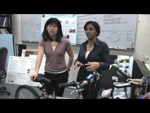 The Hunt for a High-Energy, Low-Wattage Workout (Berkeley Engineering)