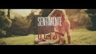 Alex - Sentimente ucise ( Lyrics video )