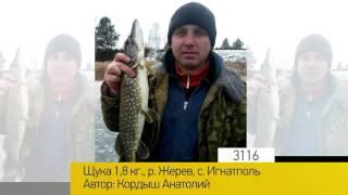 Фотоальбом - Рыбалка №623