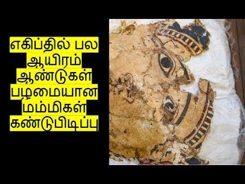 எகிப்தில் பல ஆயிரம் ஆண்டுகள் பழமையான மம்மிகள் கண்டுபிடிப்பு | IN4net