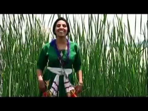 Yezina Negash - Gojjam