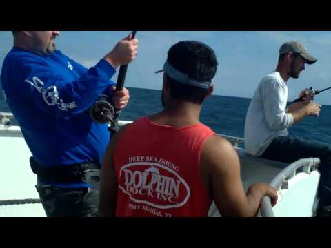 Corpus Christi Deep Sea Fishing 2015