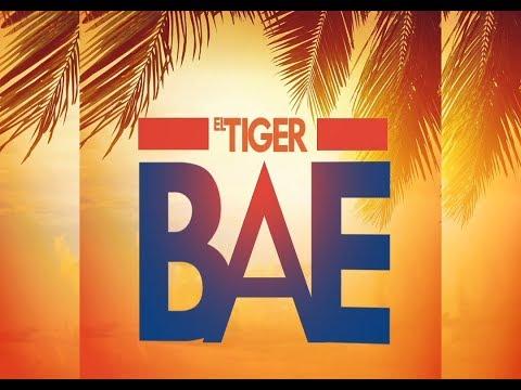 Bae -  El Tiger (Lyric Video)