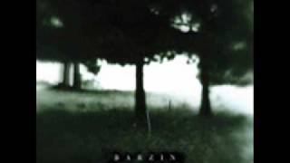 Barzin - Pale Blue Eyes