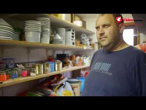 Marc & Geert Pollin - Stars of Pigeon Racing Sport [ENG]