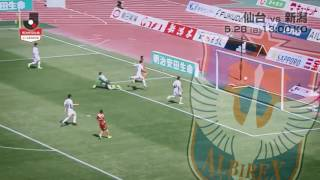 ホームで立て直しを期す仙台が新監督の初陣で勝利をあげた新潟を迎える...