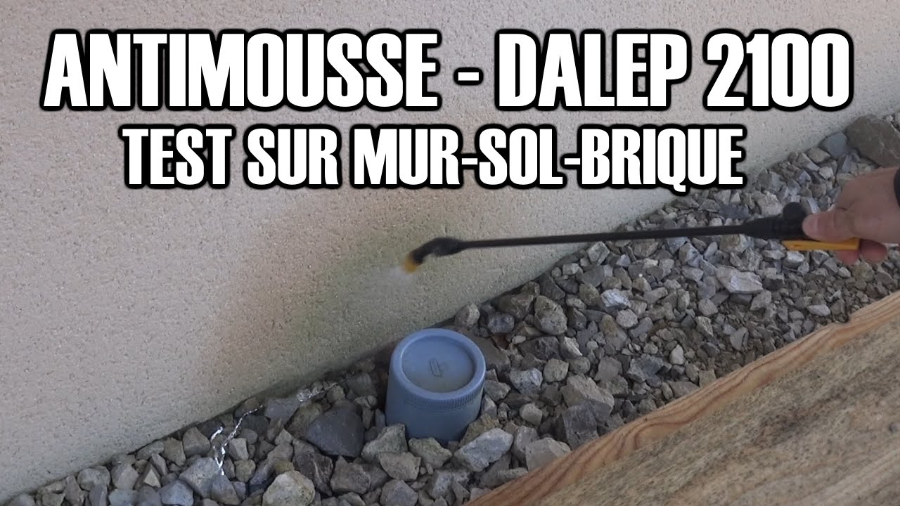 Anti Mousse Naturel Terrasse dalep 2100 : antimousse professionnel test.
