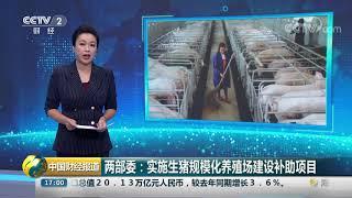 [中国财经报道]两部委:实施生猪规模化养殖场建设补助项目| CCTV财经