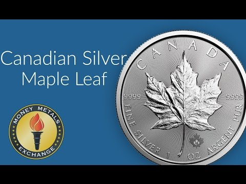 Canadian Silver Maple Leaf Coins | Royal Canadian Mint | Money Metals Exchange