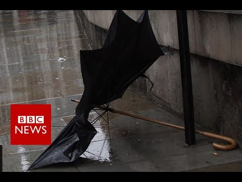 'I fix umbrellas to save the world' – BBC News