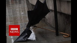 'I fix umbrellas to save the world' - BBC News