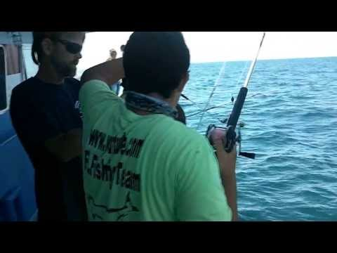 Half Day Fishing Trip On The Double Eagle - Clearwater Beach Marina (4 Hours)