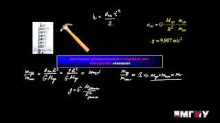 Физика. Выпуск 8. Лекция на тему «Второй закон Ньютона».