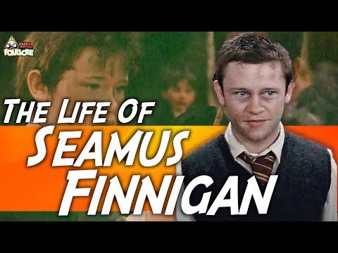The Life Of Seamus Finnegan