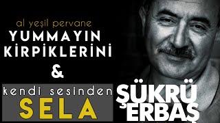 Sela   Sukru Erbas  Yummayin Kirpiklerini   Metin Karausta ft  Caner Akbal Resimi