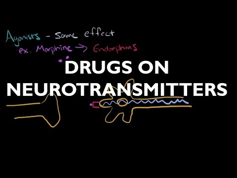 The Influence of Drugs on Neurotransmitters - AP Psychology