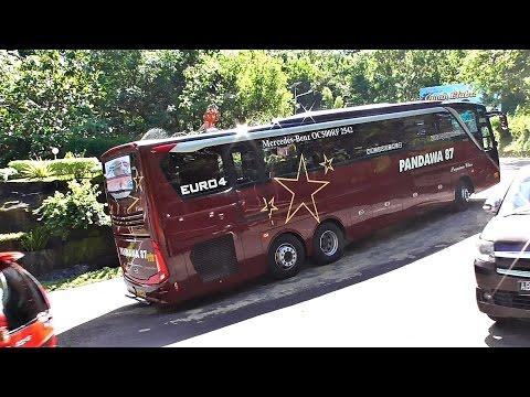 BUS MEWAH Pandawa 87 Premium Bus in Action