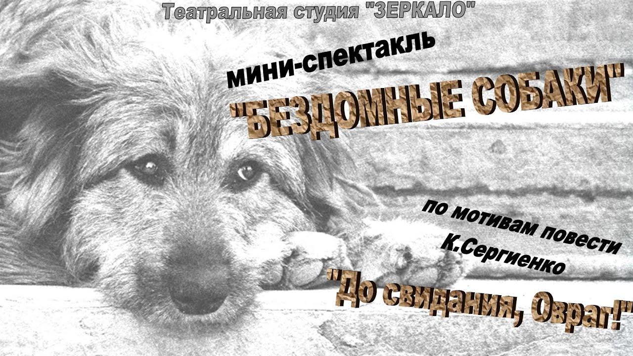 """Мини-спектакль """"Бездомные собаки"""""""