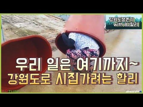 [BJ여포] 끝이 보이는 일!! 강원도오빠에게 푹빠진 할리~ :: 강원도생존기 with BJ할리