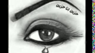 منية شبين القناطر