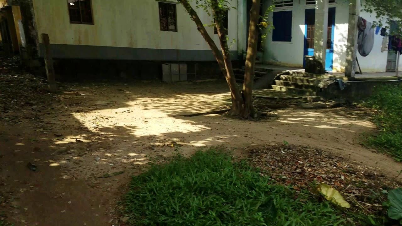 Bán đất hẽm Mạc Đỉnh Chi, Quảng Ngãi: 0868527676