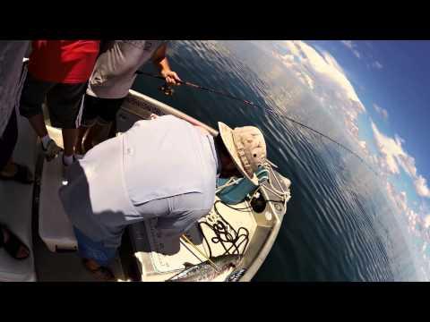 KING MACKEREL MADNESS  www FISHMISSHAYDEN com SANIBEL OFFSHORE FISHING CHARTER 239 337 4275