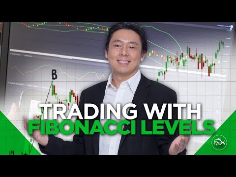 Trading with Fibonacci Levels Stock Trading Strategies by Adam Khoo