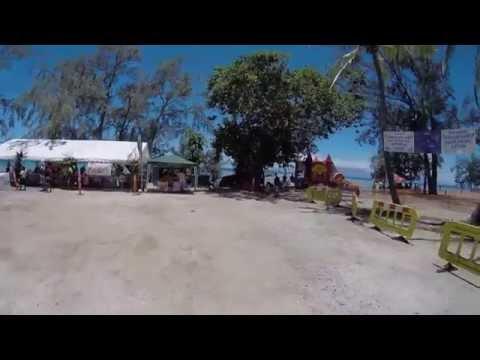 Les chiens du Club Canin de Moorea - Démonstration au Carnaval du PGEM de Moorea - 15 novembre 2014