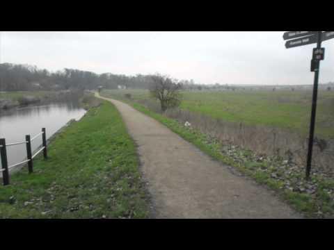 Walking in the Home Counties: Hertford & Ware Riverside Walk January 2012