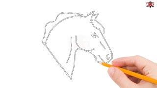 head easy horse drawing draw step simple beginners drawings unicorn tutorial getdrawings paintingvalley