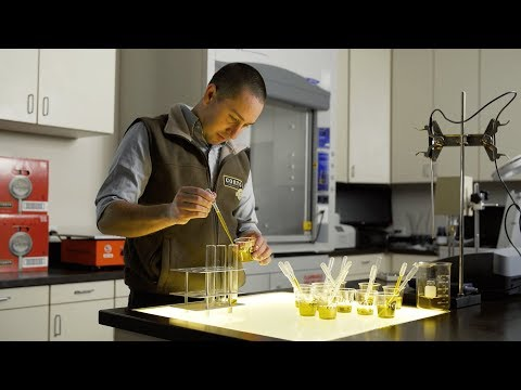 Chef's Roll: Featured Ingredient: Corto Olive Oil