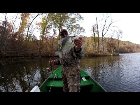 Dock shooting for crappie on lake of the ozarks 6 11 for Crappie fishing lake of the ozarks