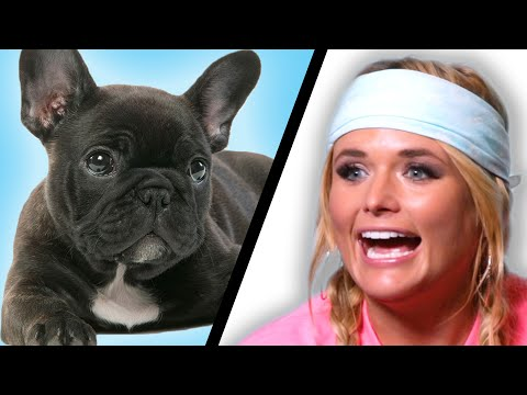 Miranda Lambert Plays With Puppies (While Answering Fan Questions)