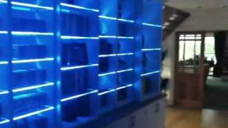 Colour changing LED lights on a bookcase with glass shelves