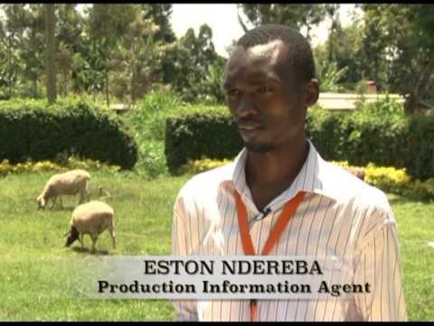 Digitizing farm records