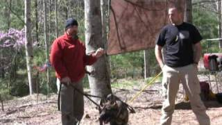 K9 Training With Robert Oliver Part 2, Equip 2 Endure