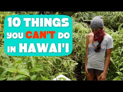 What it's REALLY like living in Puna on the Big Island of Hawaii (Funny but True)
