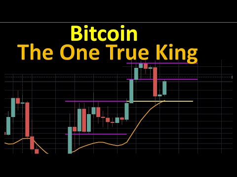 Bitcoin: The one true king