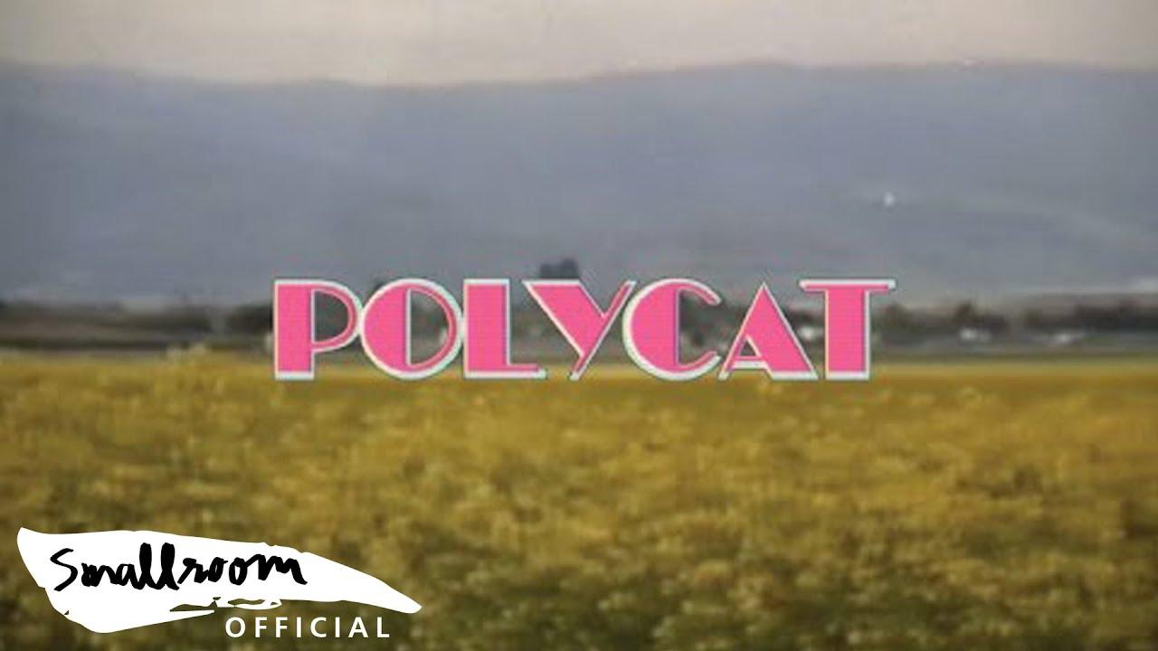 POLYCAT – Chapter 2 เวลาเธอยิ้ม | you had me at hello [Official MV] | เนื้อหาเพลง ยิ้ม ค่อยๆที่สมบูรณ์ที่สุด