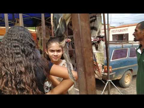Índio preparando garrafada de remédios naturais na feira de Uibaí