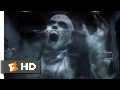 Dark Floors 2008  The Shrieking Ghost  312  Movies